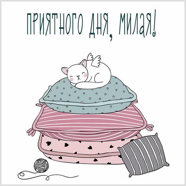 Картинка приятного дня милая - скачать бесплатно на otkrytkivsem.ru
