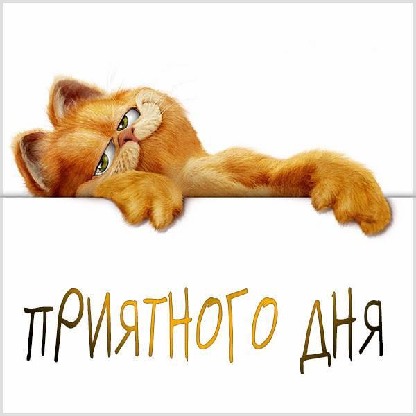 Картинка приятного дня прикольная смешная - скачать бесплатно на otkrytkivsem.ru