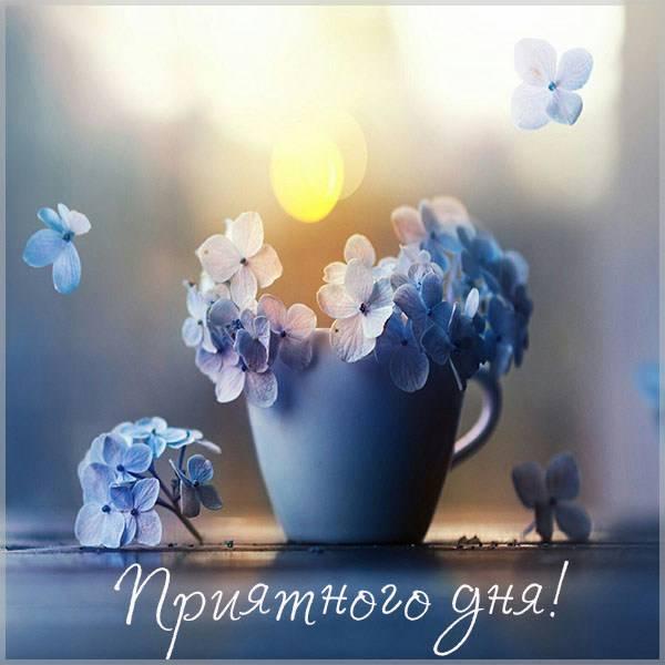Картинка приятного дня - скачать бесплатно на otkrytkivsem.ru
