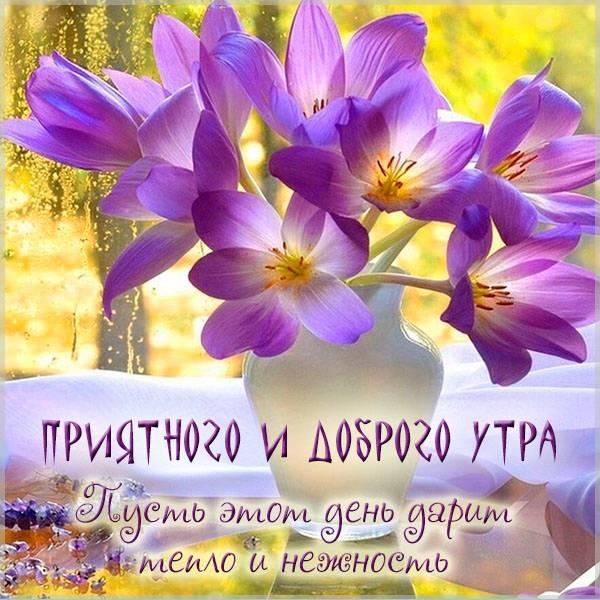 Картинка приятного доброго утра - скачать бесплатно на otkrytkivsem.ru