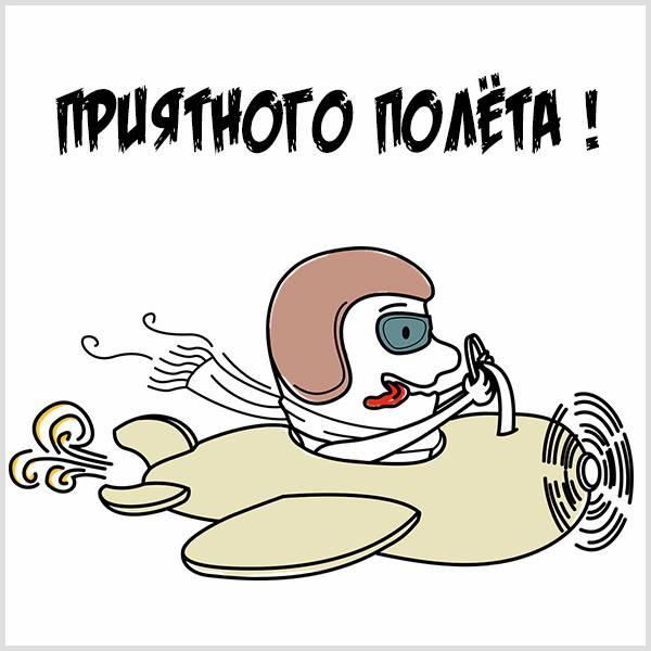 Картинка приятного полета прикольная - скачать бесплатно на otkrytkivsem.ru