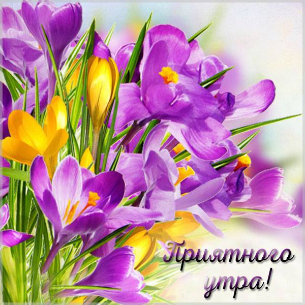 Картинка приятного утра красивая - скачать бесплатно на otkrytkivsem.ru