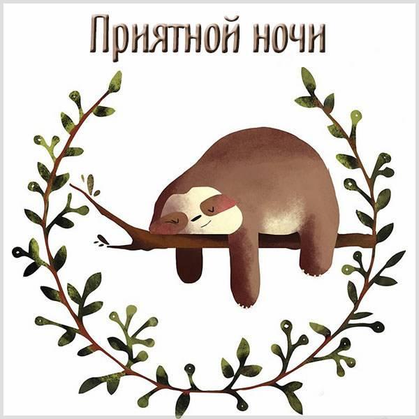 Картинка приятной ночи прикольная - скачать бесплатно на otkrytkivsem.ru