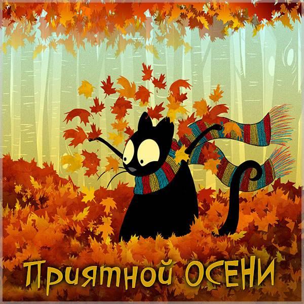 Картинка приятной осени - скачать бесплатно на otkrytkivsem.ru