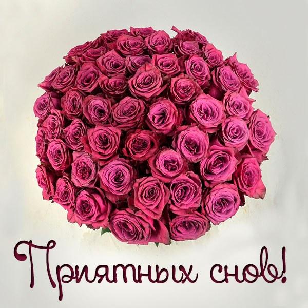 Картинка приятных снов красивая - скачать бесплатно на otkrytkivsem.ru