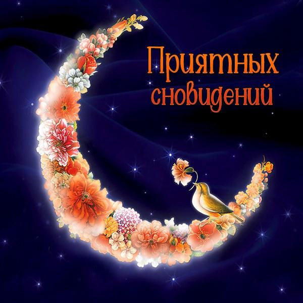 Картинка приятных сновидений красивая женщине - скачать бесплатно на otkrytkivsem.ru