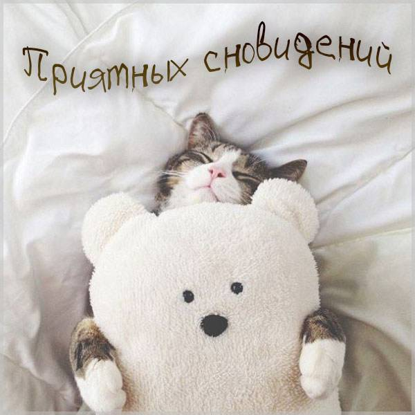 Картинка приятных сновидений мужчине с надписью - скачать бесплатно на otkrytkivsem.ru