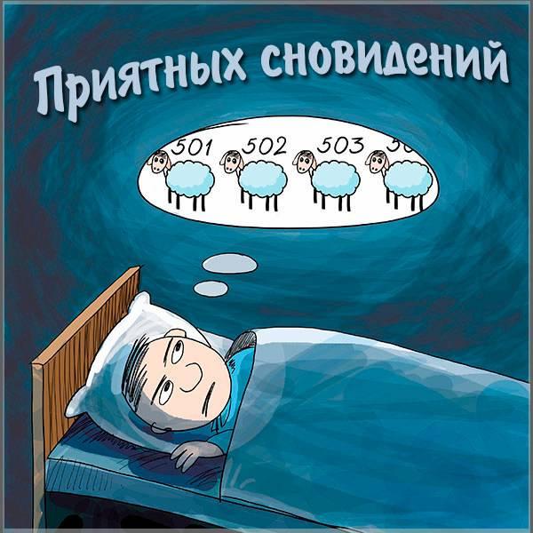 Картинка приятных сновидений прикольная мужчине - скачать бесплатно на otkrytkivsem.ru