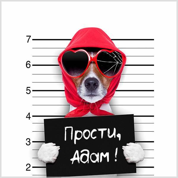 Картинка прости Адам - скачать бесплатно на otkrytkivsem.ru
