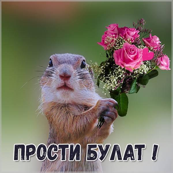 Картинка прости Булат - скачать бесплатно на otkrytkivsem.ru