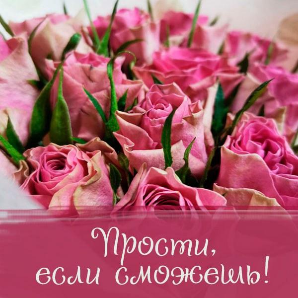 Картинка прости если сможешь с надписью - скачать бесплатно на otkrytkivsem.ru