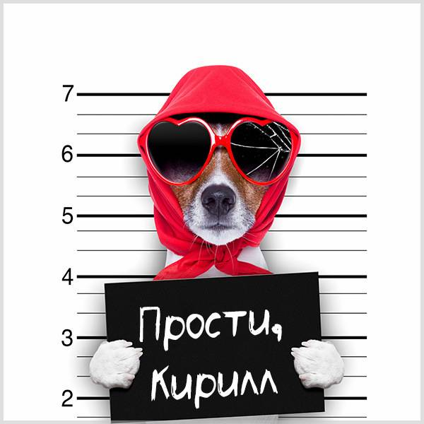 Картинка прости Кирилл - скачать бесплатно на otkrytkivsem.ru