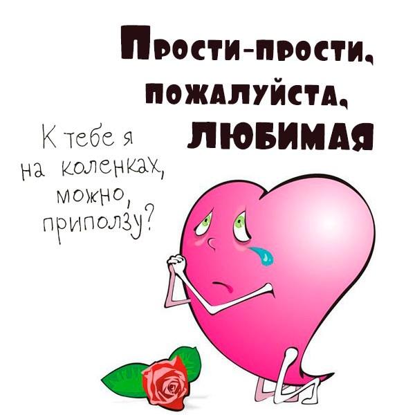 Картинка прости любимая прикольная - скачать бесплатно на otkrytkivsem.ru
