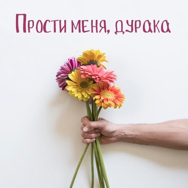 Картинка прости меня дурака девушке - скачать бесплатно на otkrytkivsem.ru