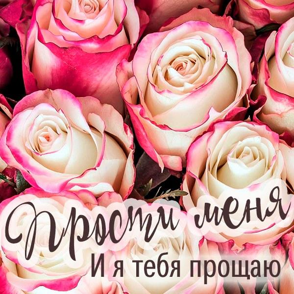 Картинка прости меня и я тебя прощаю - скачать бесплатно на otkrytkivsem.ru
