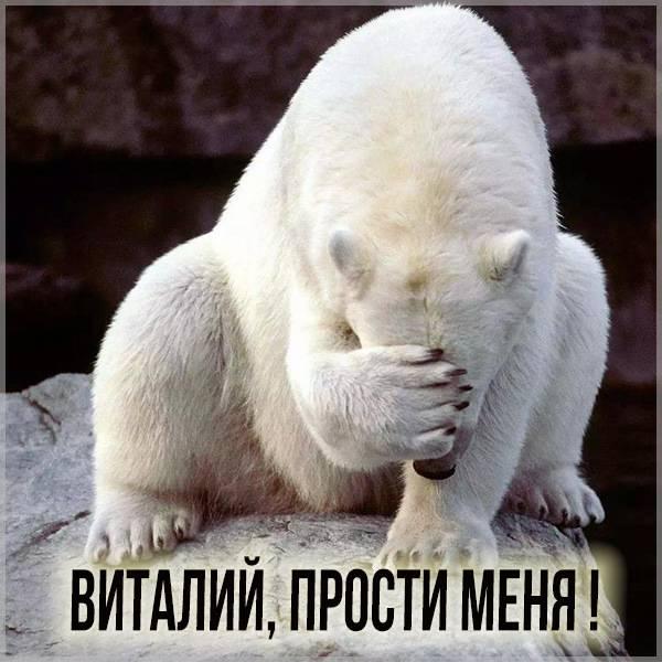 Картинка прости меня Виталий - скачать бесплатно на otkrytkivsem.ru
