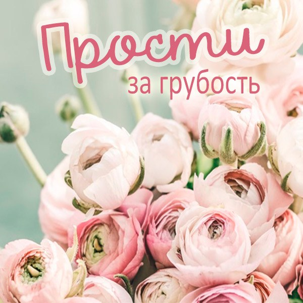 Картинка прости за грубость - скачать бесплатно на otkrytkivsem.ru
