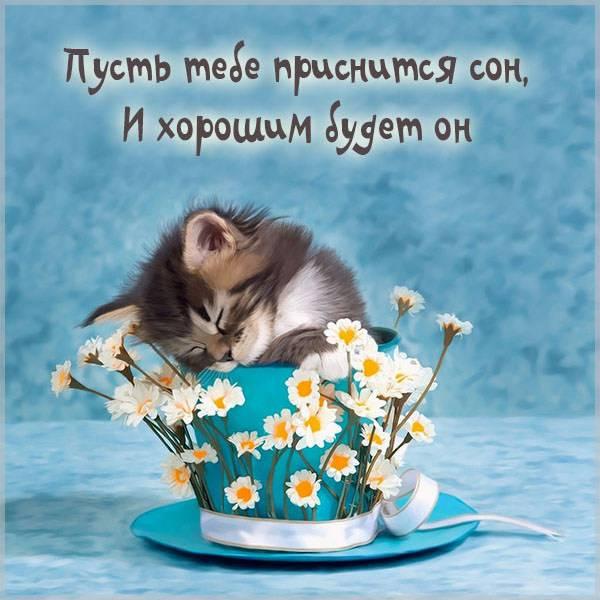 Картинка пусть приснится хороший сон - скачать бесплатно на otkrytkivsem.ru