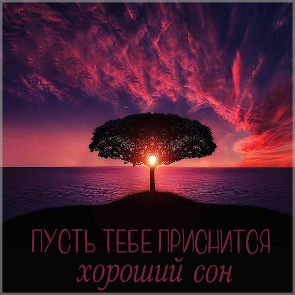 Картинка пусть тебе приснится хороший сон - скачать бесплатно на otkrytkivsem.ru