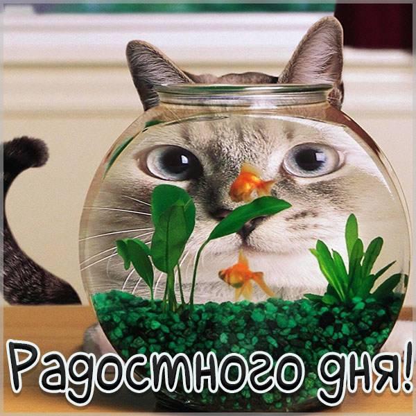 Картинка радостного дня смешная - скачать бесплатно на otkrytkivsem.ru