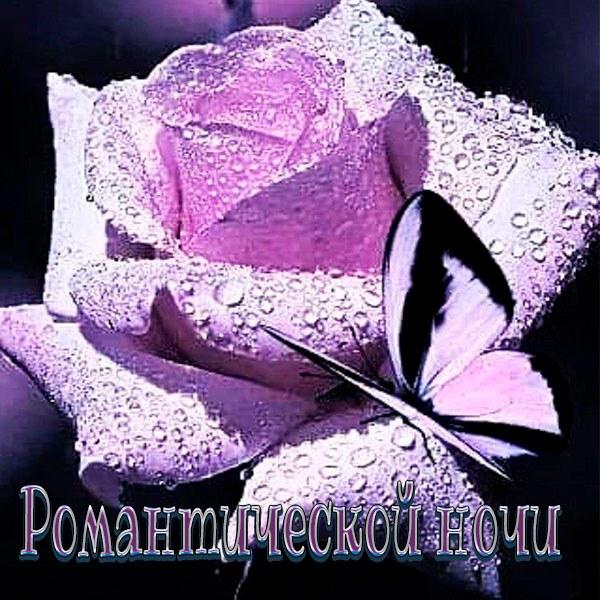 Картинка романтической ночи - скачать бесплатно на otkrytkivsem.ru