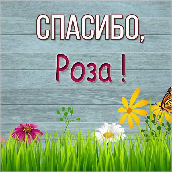 Картинка Роза спасибо - скачать бесплатно на otkrytkivsem.ru