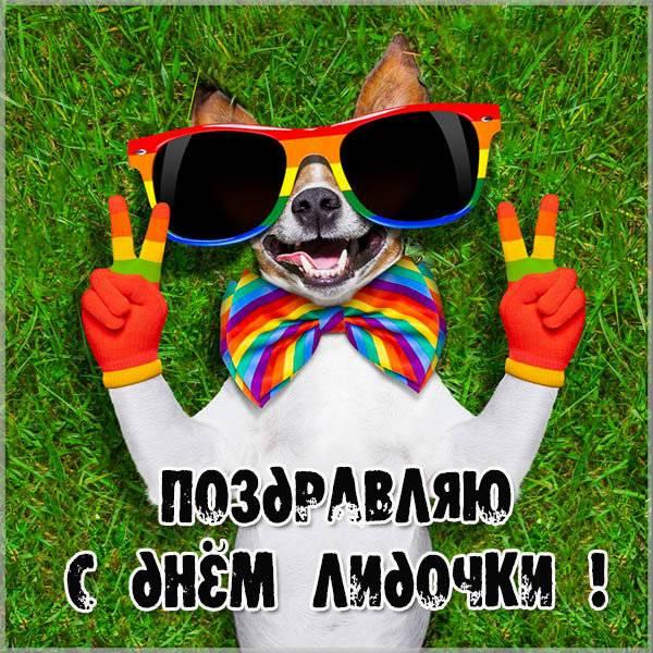 Картинка с днем имени Лидочка - скачать бесплатно на otkrytkivsem.ru