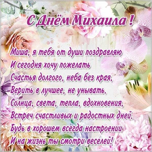 Картинка с днем Миши в стихах - скачать бесплатно на otkrytkivsem.ru
