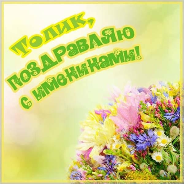 Картинка с днем Толика - скачать бесплатно на otkrytkivsem.ru