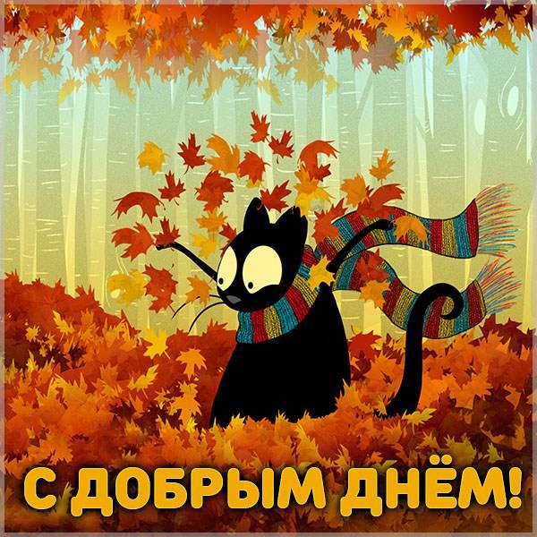 Картинка с добрым днем осенняя позитив - скачать бесплатно на otkrytkivsem.ru