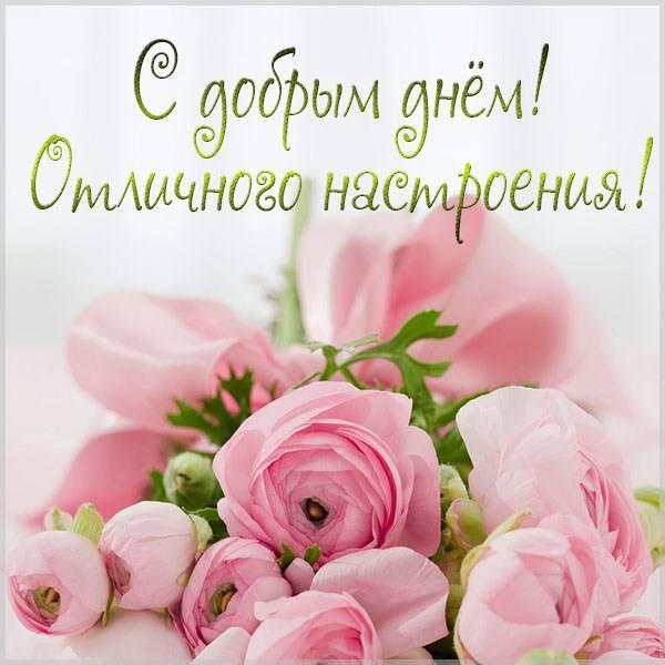Картинка с добрым днем отличного настроения девушке - скачать бесплатно на otkrytkivsem.ru