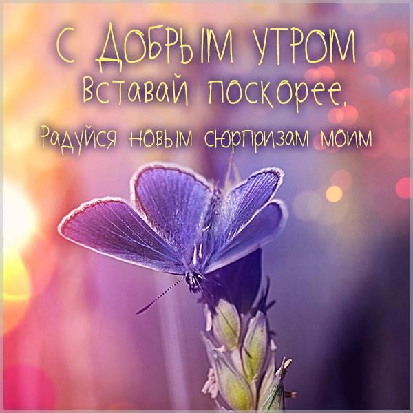 Картинка с добрым утром для девушки необычная - скачать бесплатно на otkrytkivsem.ru