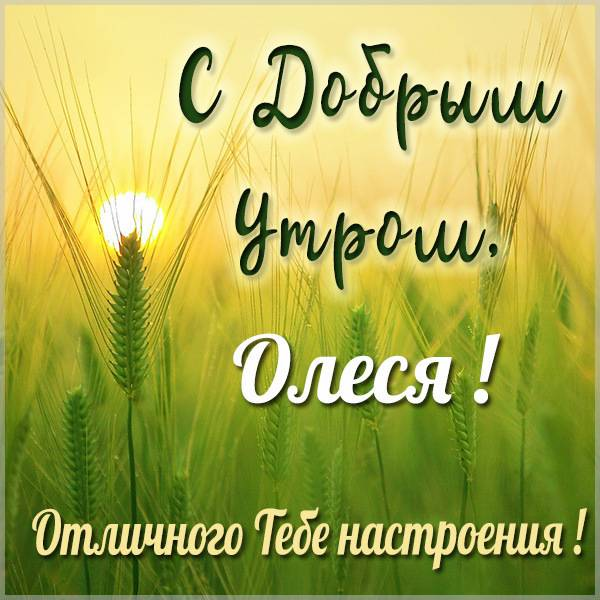 Картинка с добрым утром для Олеси - скачать бесплатно на otkrytkivsem.ru