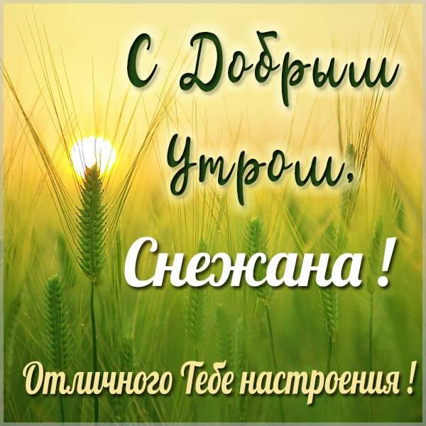 Картинка с добрым утром для Снежаны - скачать бесплатно на otkrytkivsem.ru