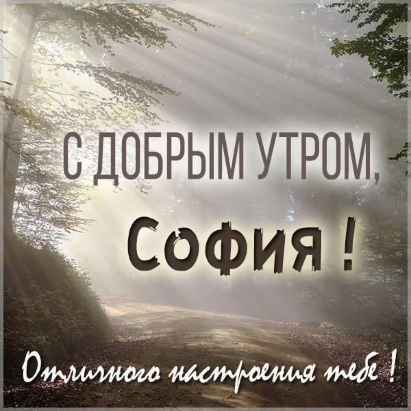 Картинка с добрым утром для Софии - скачать бесплатно на otkrytkivsem.ru
