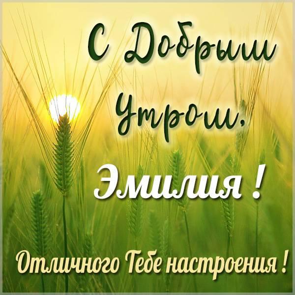 Картинка с добрым утром Эмилия - скачать бесплатно на otkrytkivsem.ru
