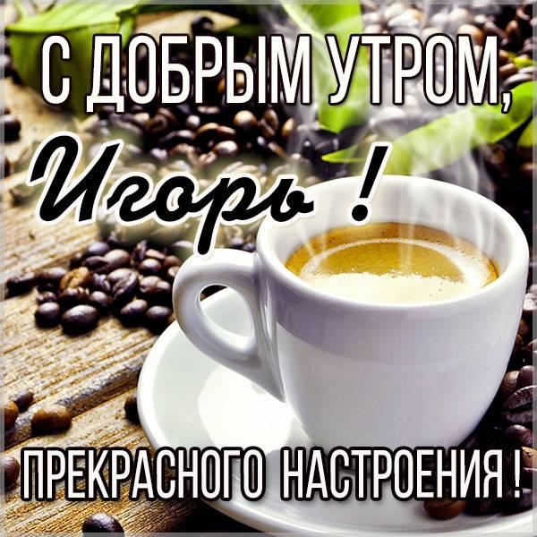 Картинка с добрым утром Игорь - скачать бесплатно на otkrytkivsem.ru