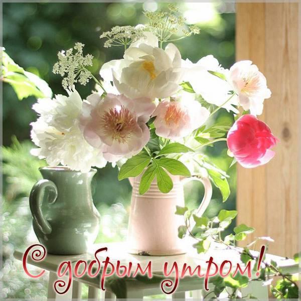 Картинка с добрым утром красивая необычная волшебная - скачать бесплатно на otkrytkivsem.ru