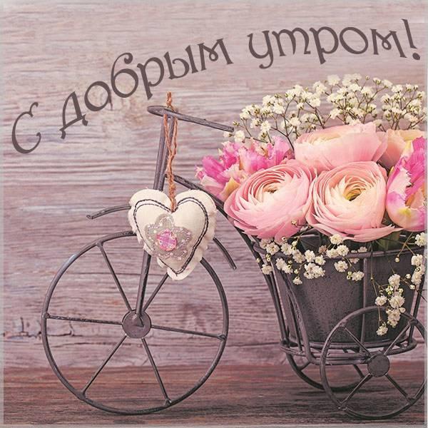 Картинка с добрым утром нежная женщине прикольная - скачать бесплатно на otkrytkivsem.ru