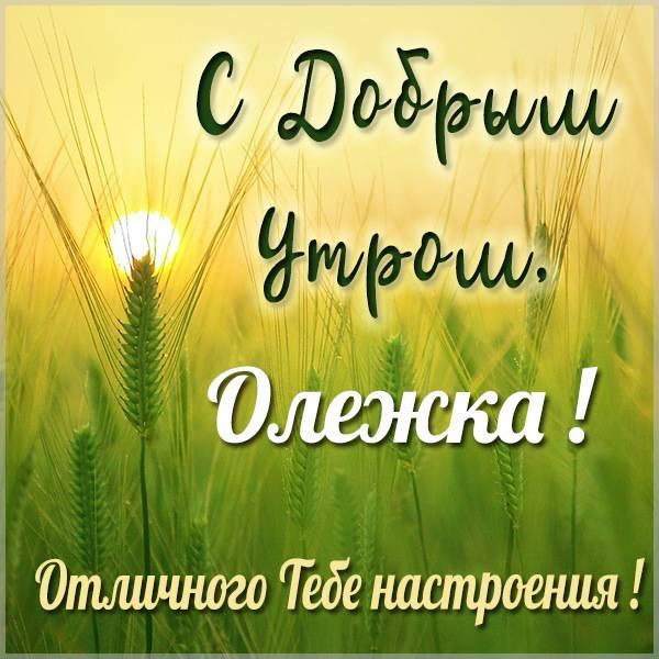 Картинка с добрым утром Олежка - скачать бесплатно на otkrytkivsem.ru