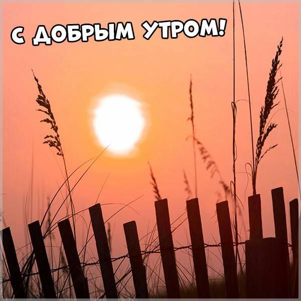 Картинка с добрым утром прикольная новая оригинальная - скачать бесплатно на otkrytkivsem.ru