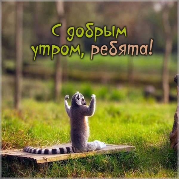 Картинка с добрым утром ребята прикол - скачать бесплатно на otkrytkivsem.ru