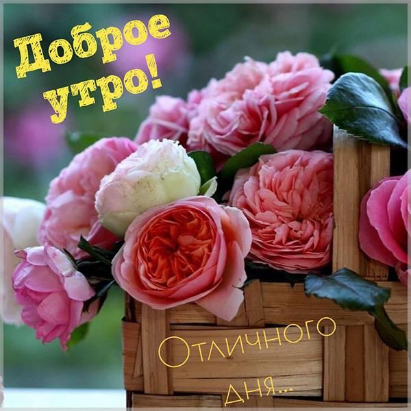 Картинка с добрым утром с цветами красивая - скачать бесплатно на otkrytkivsem.ru