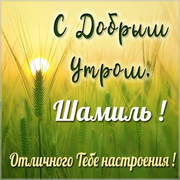 Картинка с добрым утром Шамиль - скачать бесплатно на otkrytkivsem.ru