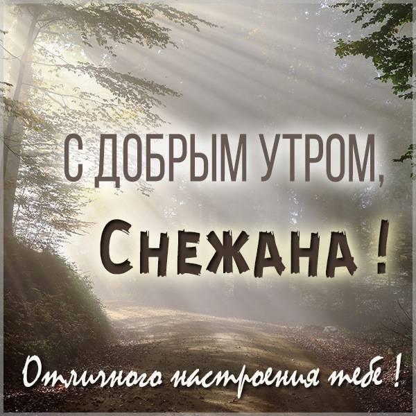 Картинка с добрым утром Снежана - скачать бесплатно на otkrytkivsem.ru