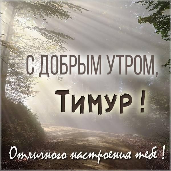 Картинка с добрым утром Тимур - скачать бесплатно на otkrytkivsem.ru