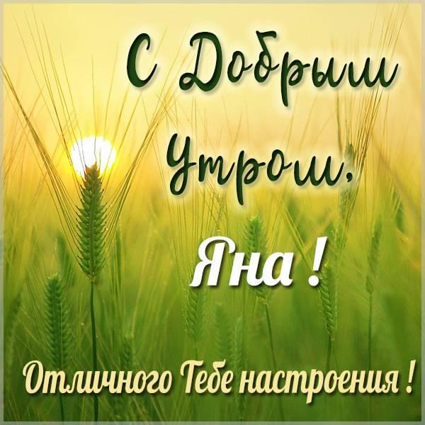 Картинка с добрым утром Яна - скачать бесплатно на otkrytkivsem.ru