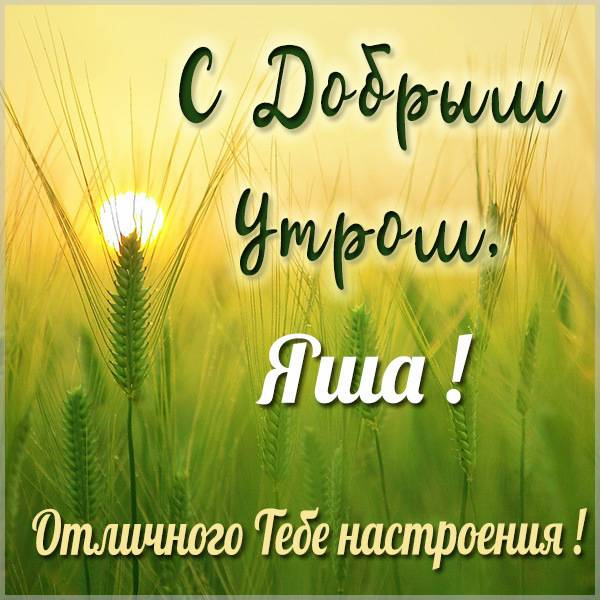 Картинка с добрым утром Яша - скачать бесплатно на otkrytkivsem.ru