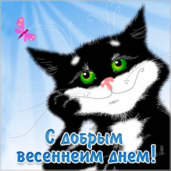 Картинка с добрым весенним днем прикольная - скачать бесплатно на otkrytkivsem.ru