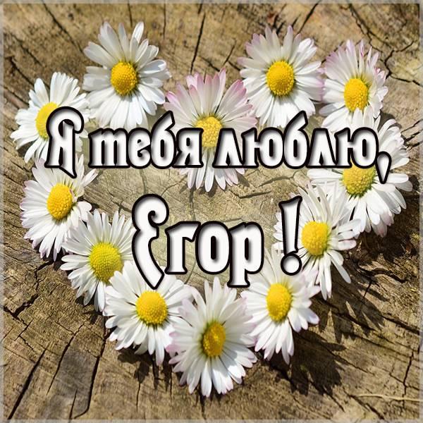 Картинка с именем Егор я тебя люблю - скачать бесплатно на otkrytkivsem.ru